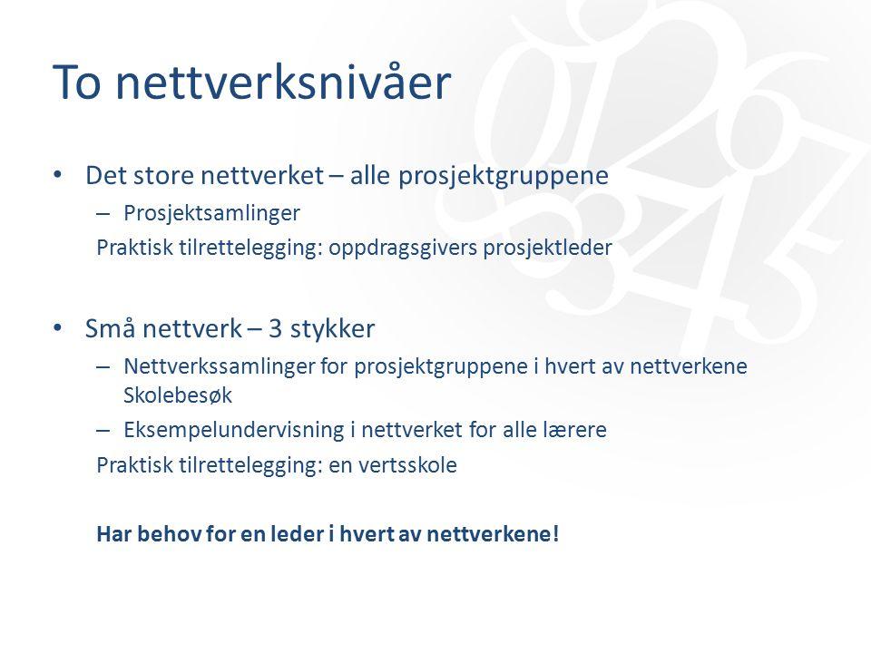 To nettverksnivåer Det store nettverket – alle prosjektgruppene – Prosjektsamlinger Praktisk tilrettelegging: oppdragsgivers prosjektleder Små nettverk – 3 stykker – Nettverkssamlinger for prosjektgruppene i hvert av nettverkene Skolebesøk – Eksempelundervisning i nettverket for alle lærere Praktisk tilrettelegging: en vertsskole Har behov for en leder i hvert av nettverkene!