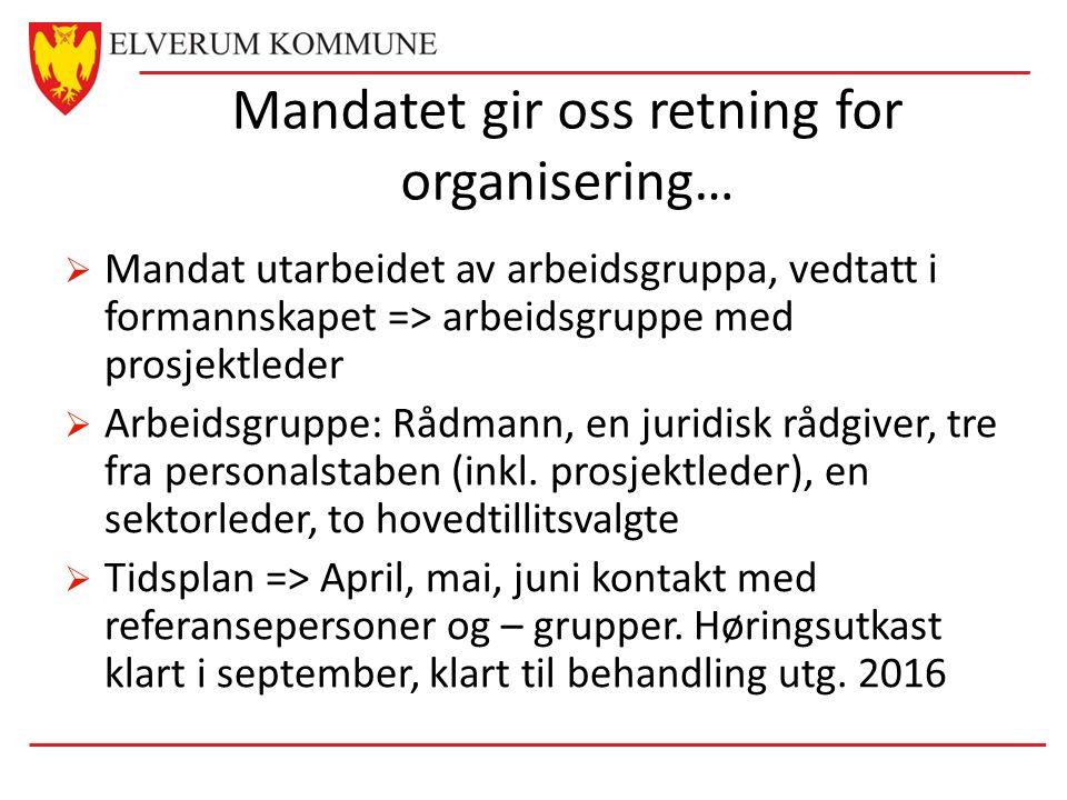 Mandatet gir oss retning for organisering…  Mandat utarbeidet av arbeidsgruppa, vedtatt i formannskapet => arbeidsgruppe med prosjektleder  Arbeidsgruppe: Rådmann, en juridisk rådgiver, tre fra personalstaben (inkl.