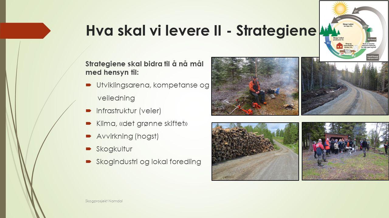 Hva skal vi levere II - Strategiene Strategiene skal bidra til å nå mål med hensyn til:  Utviklingsarena, kompetanse og veiledning  Infrastruktur (veier)  Klima, «det grønne skiftet»  Avvirkning (hogst)  Skogkultur  Skogindustri og lokal foredling Skogprosjekt Namdal