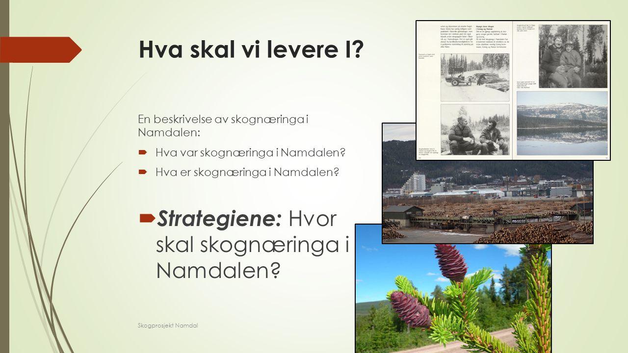 Hva skal vi levere I. En beskrivelse av skognæringa i Namdalen:  Hva var skognæringa i Namdalen.