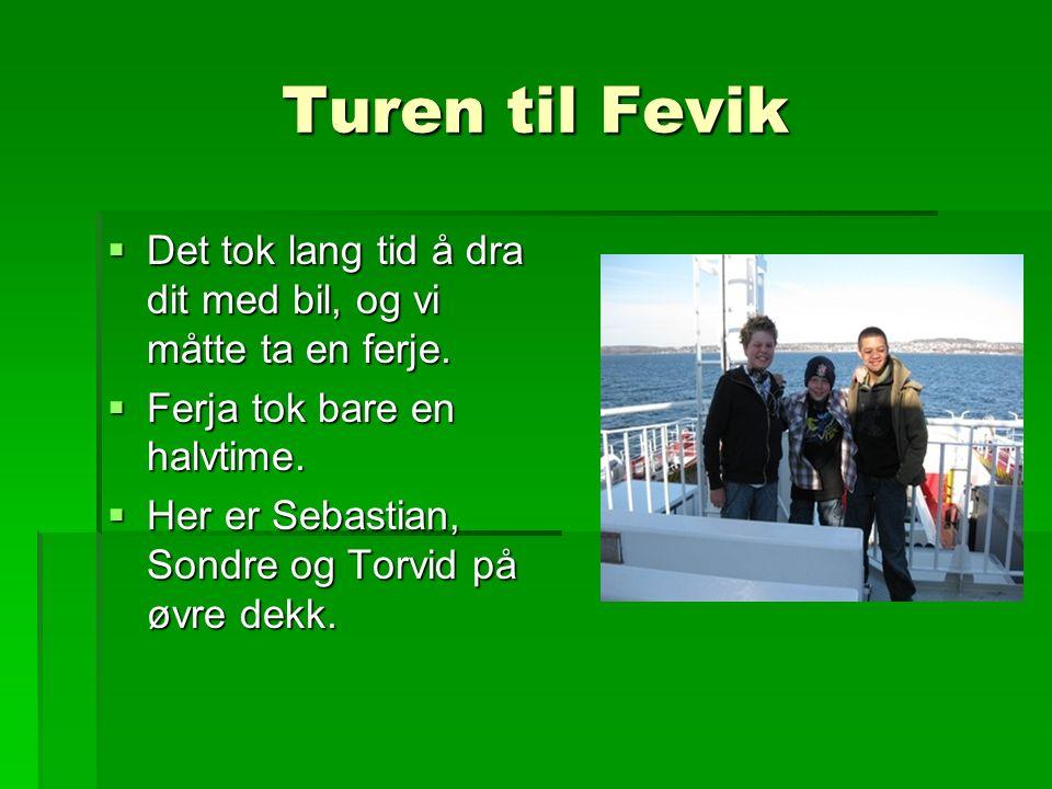 Turen til Fevik  Det tok lang tid å dra dit med bil, og vi måtte ta en ferje.