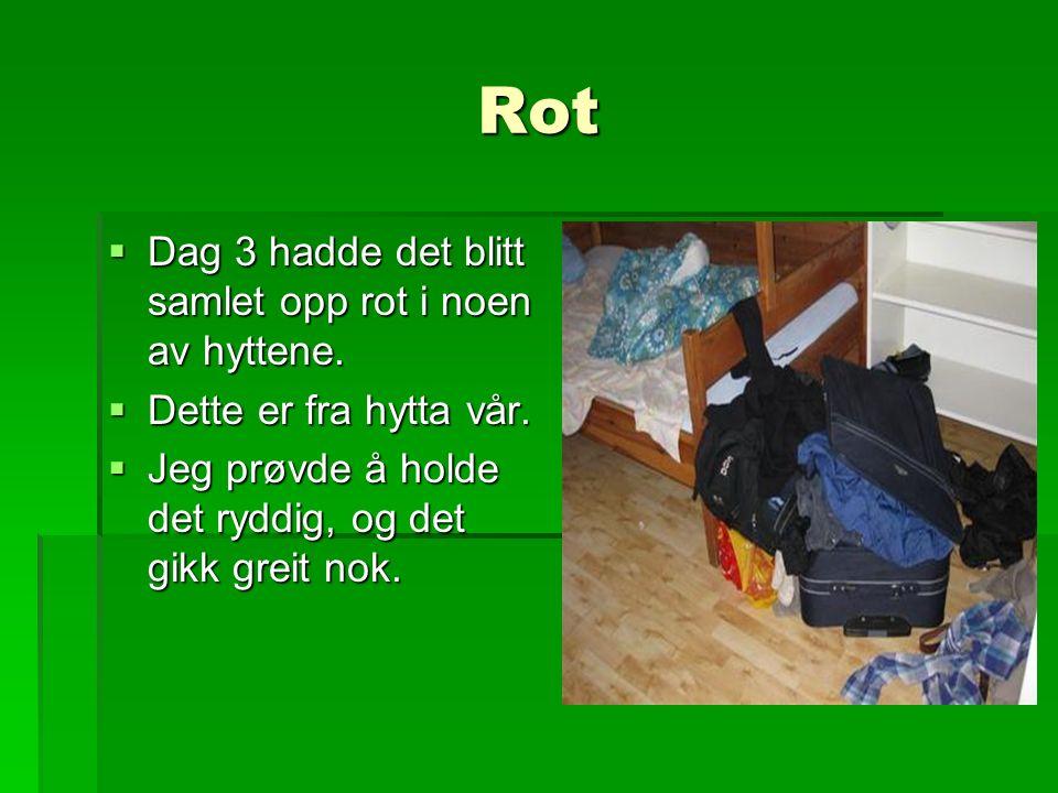 Rot  Dag 3 hadde det blitt samlet opp rot i noen av hyttene.