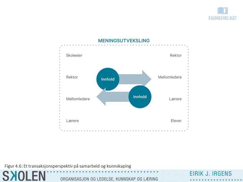 Figur 4.6: Et transaksjonsperspektiv på samarbeid og kunnskaping