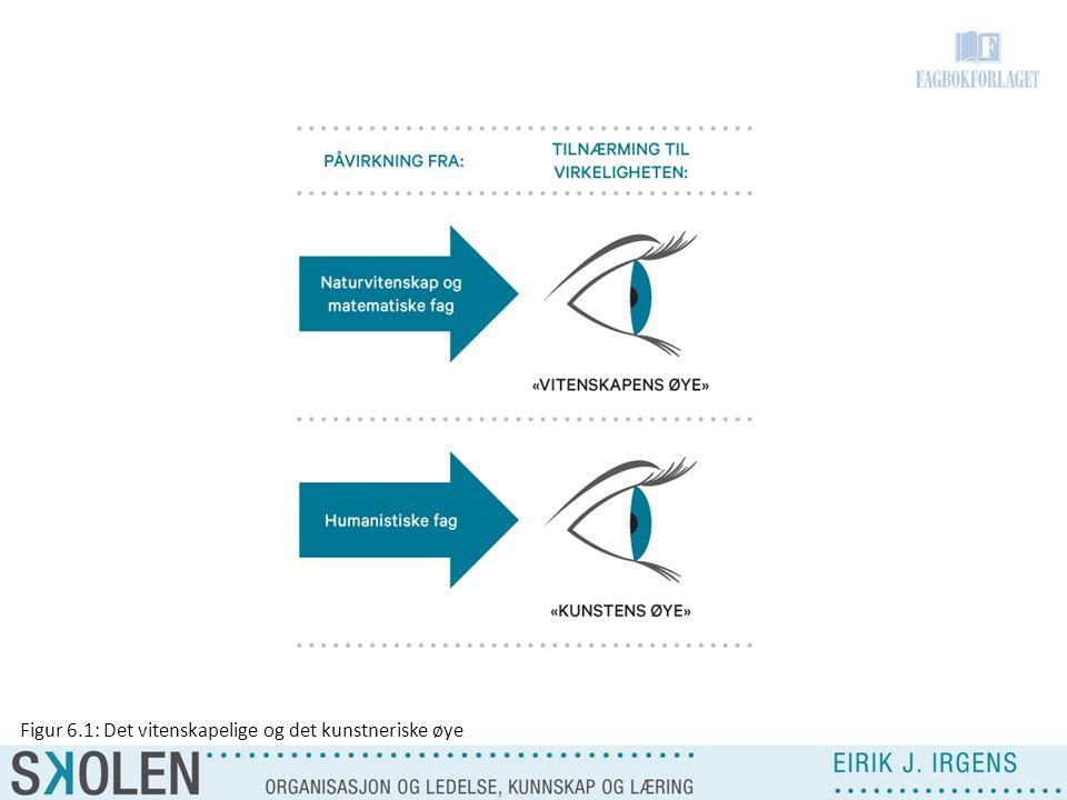 Figur 6.1: Det vitenskapelige og det kunstneriske øye