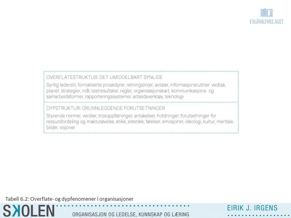 Tabell 6.2: Overflate- og dypfenomener i organisasjoner