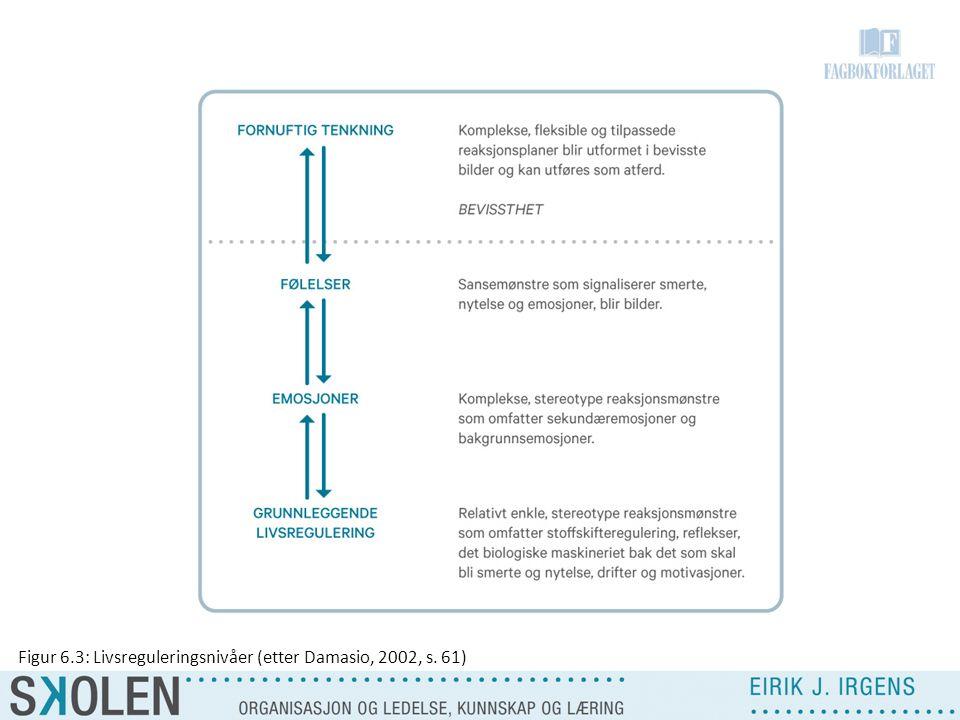 Figur 6.3: Livsreguleringsnivåer (etter Damasio, 2002, s. 61)