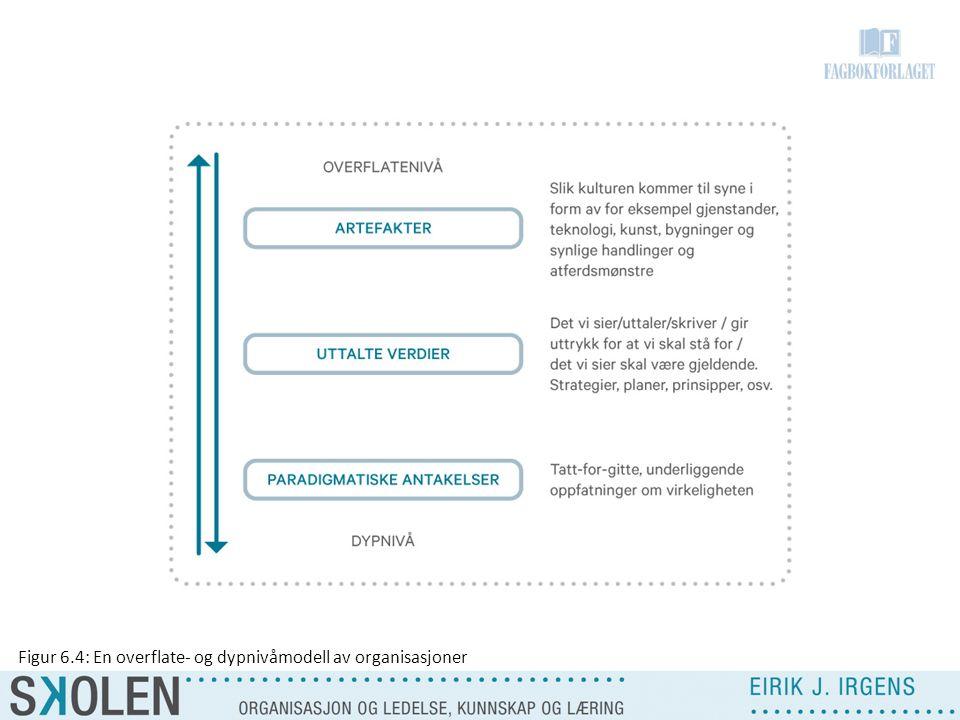 Figur 6.4: En overflate- og dypnivåmodell av organisasjoner