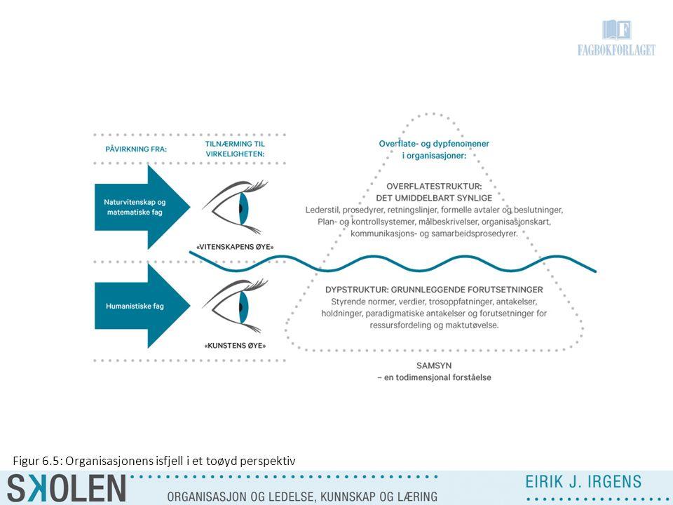 Figur 6.5: Organisasjonens isfjell i et toøyd perspektiv