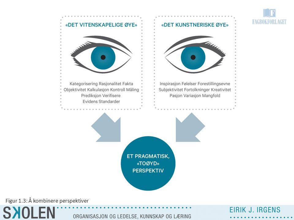 Figur 1.3: Å kombinere perspektiver