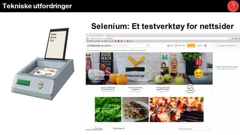 Tekniske utfordringer Selenium: Et testverktøy for nettsider