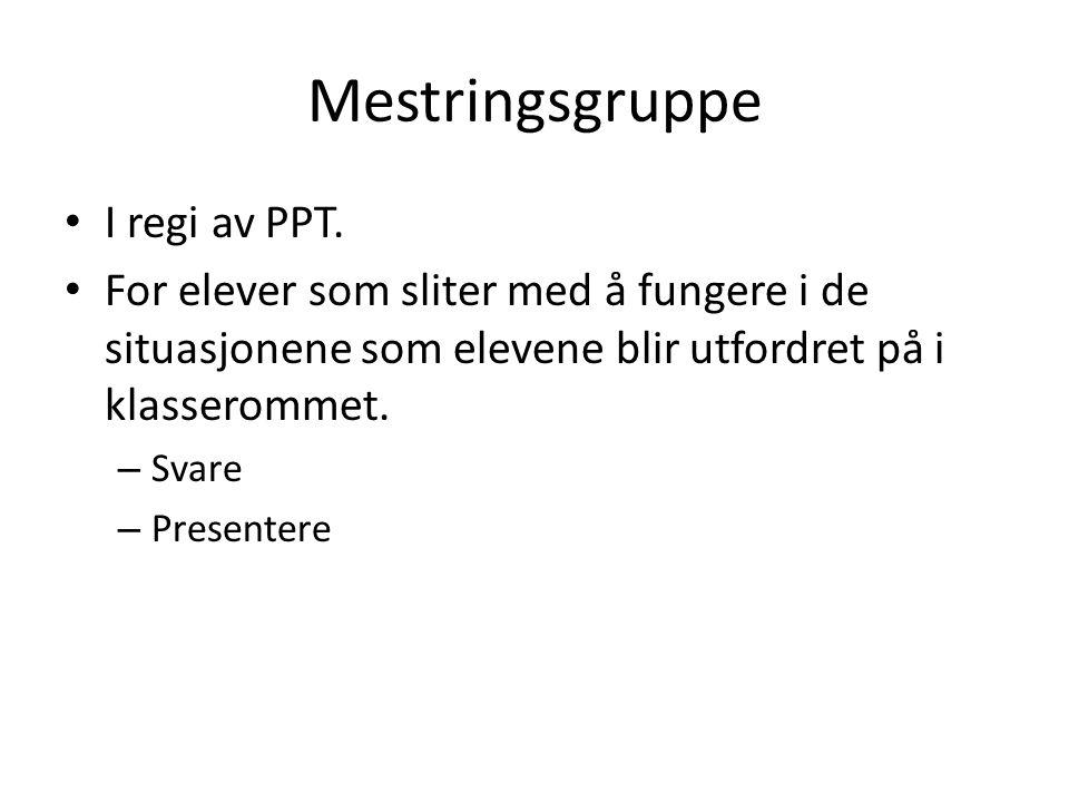 Mestringsgruppe I regi av PPT.