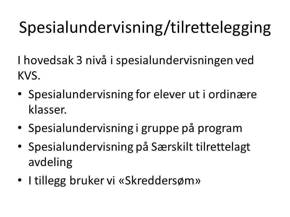 Spesialundervisning/tilrettelegging I hovedsak 3 nivå i spesialundervisningen ved KVS. Spesialundervisning for elever ut i ordinære klasser. Spesialun