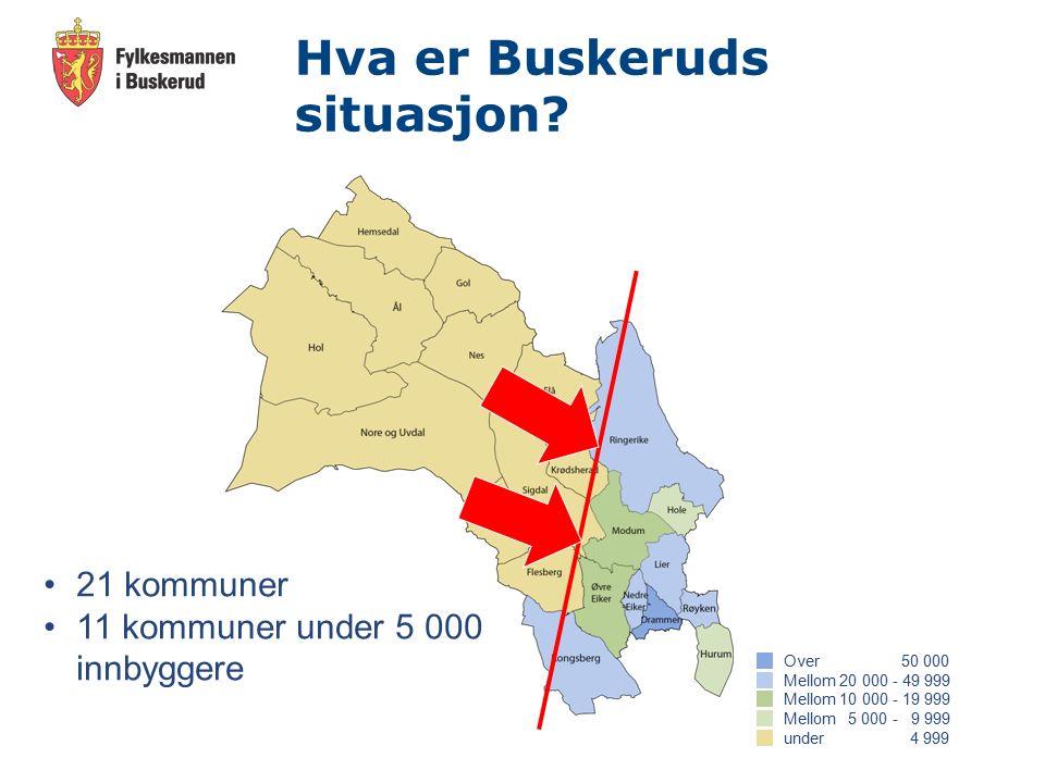 Hva er Buskeruds situasjon.