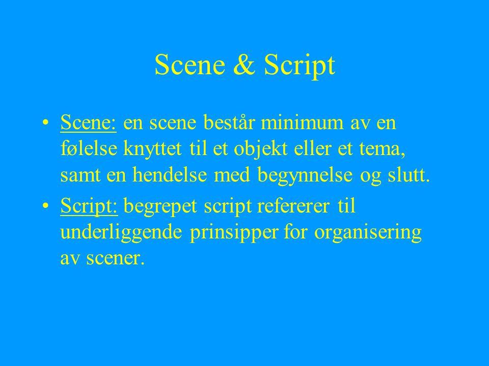 Scene & Script Scene: en scene består minimum av en følelse knyttet til et objekt eller et tema, samt en hendelse med begynnelse og slutt. Script: beg