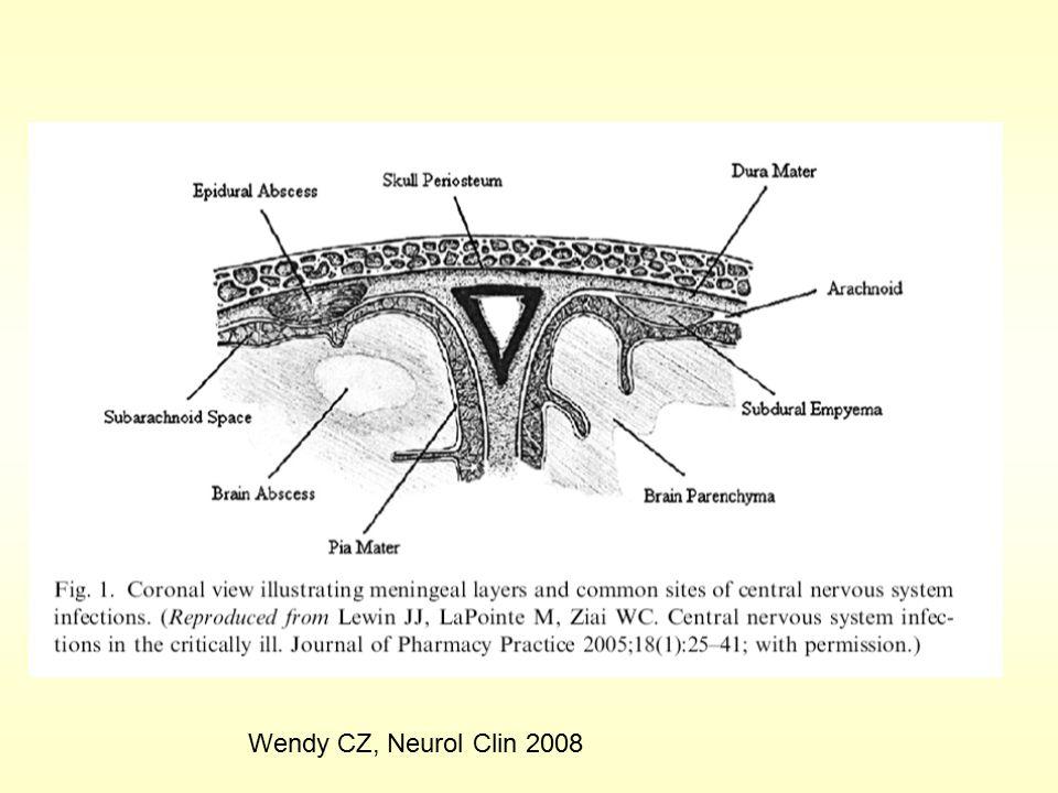 Wendy CZ, Neurol Clin 2008