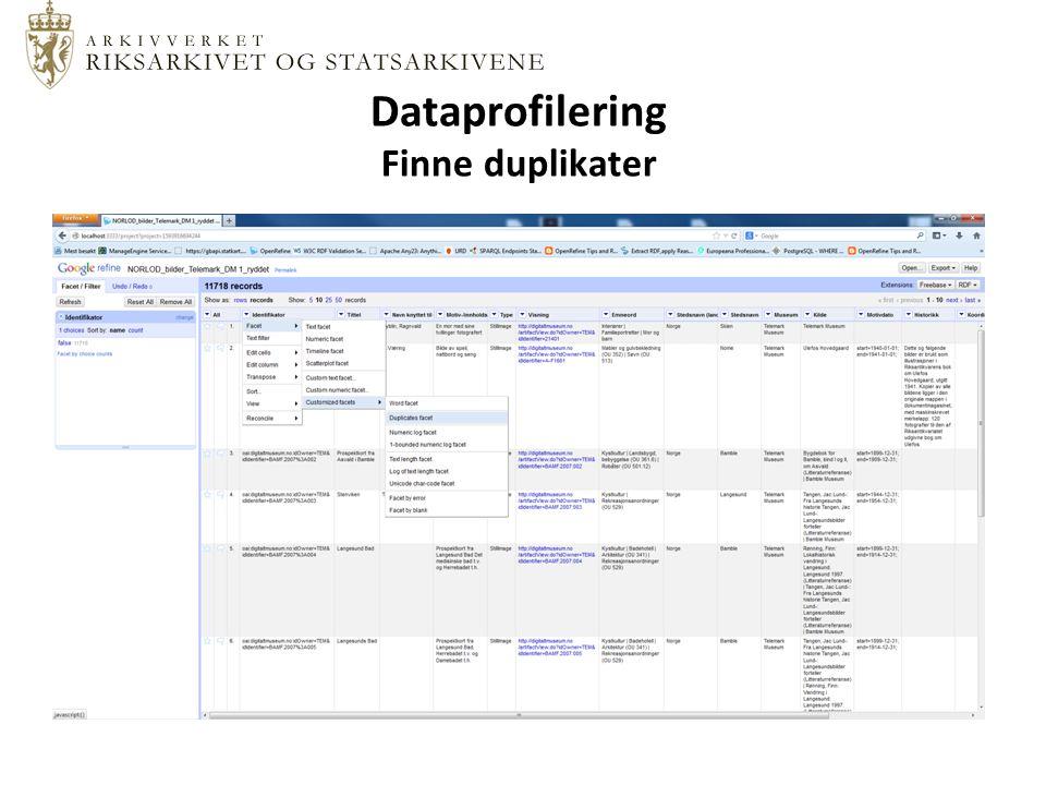 Dataprofilering Finne duplikater