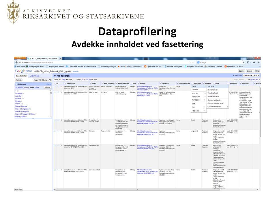 Dataprofilering Avdekke innholdet ved fasettering