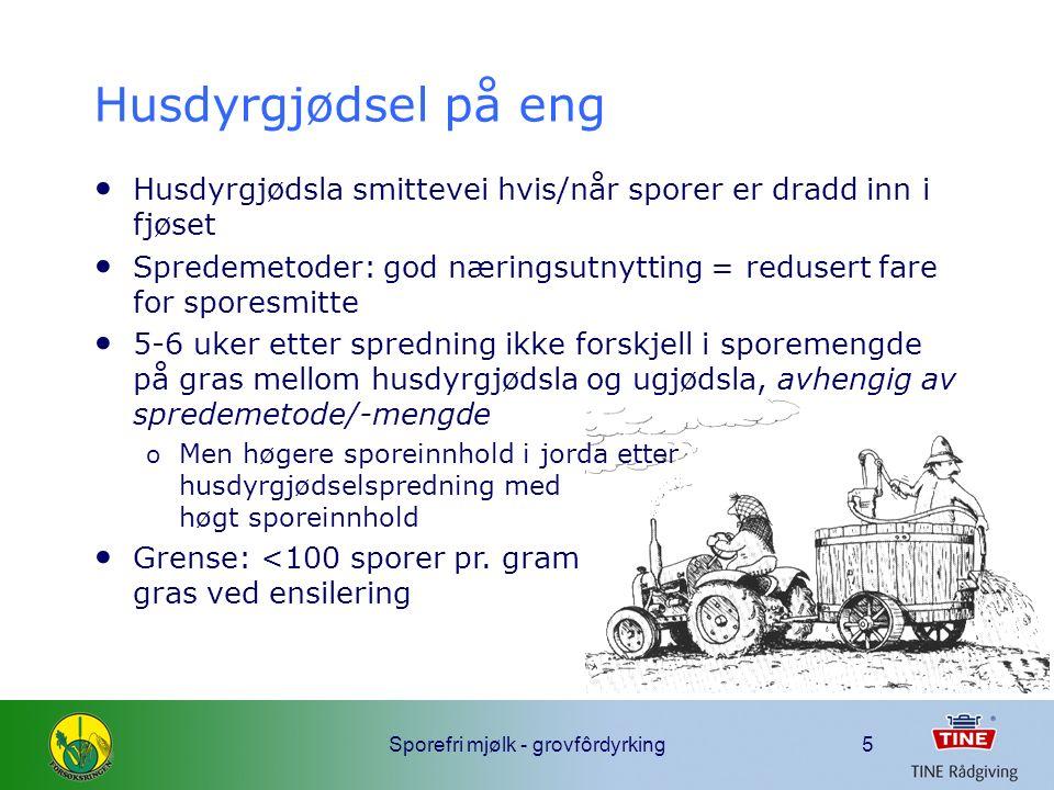 Sporefri mjølk - grovfôrdyrking6 Husdyrgjødsel eller NPK Mikroorganismer på gras etter ulik gjødsling (Östling og Lindgren 1991)