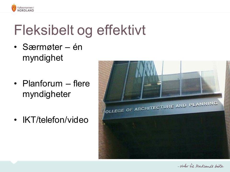 Fleksibelt og effektivt Særmøter – én myndighet Planforum – flere myndigheter IKT/telefon/video