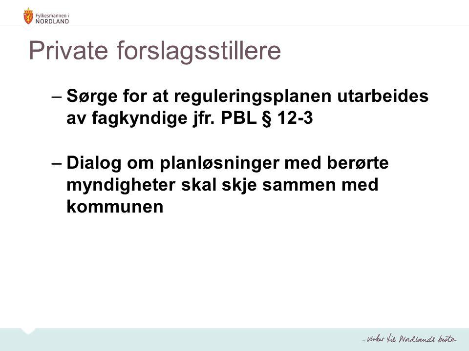 Private forslagsstillere –Sørge for at reguleringsplanen utarbeides av fagkyndige jfr.