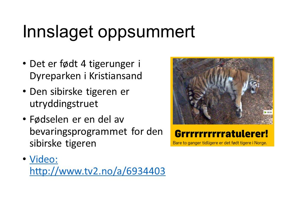 Innslaget oppsummert Det er født 4 tigerunger i Dyreparken i Kristiansand Den sibirske tigeren er utryddingstruet Fødselen er en del av bevaringsprogrammet for den sibirske tigeren Video: http://www.tv2.no/a/6934403 Video: http://www.tv2.no/a/6934403