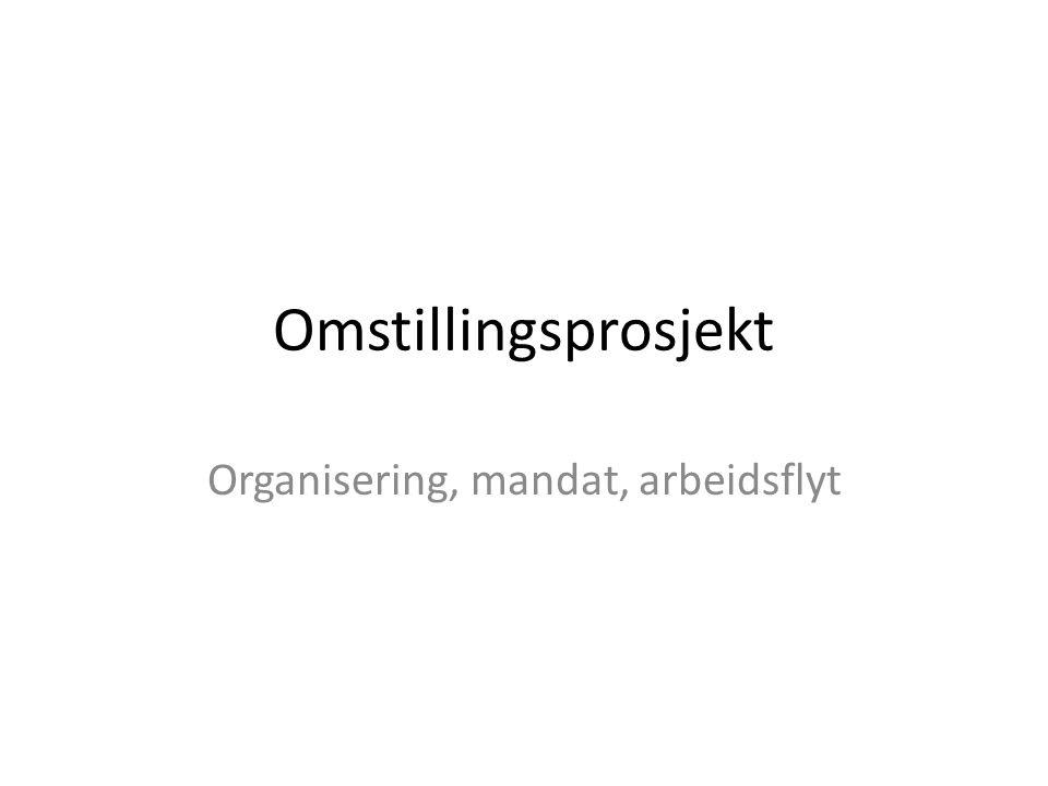 Omstillingsprosjekt Organisering, mandat, arbeidsflyt