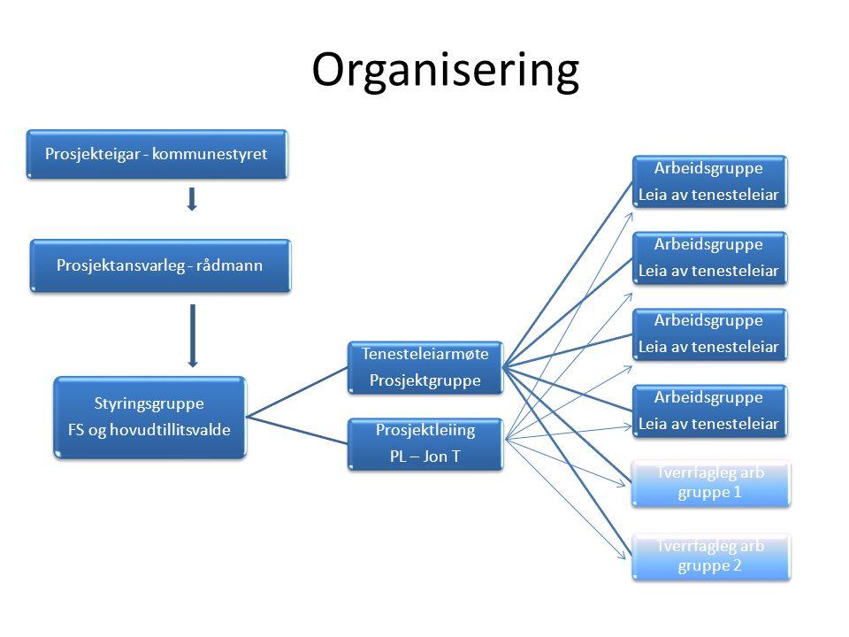 AG TL AG TL AG TL SG PL Arbeidsflyt – rytme Reorganisering tverrfagleg PL = Prosjektleiar TL =Tenesteleiarmøte AG = Arbeidsgruppe SG = Styringsgruppe AG