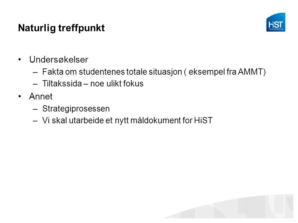 Naturlig treffpunkt Undersøkelser –Fakta om studentenes totale situasjon ( eksempel fra AMMT) –Tiltakssida – noe ulikt fokus Annet –Strategiprosessen