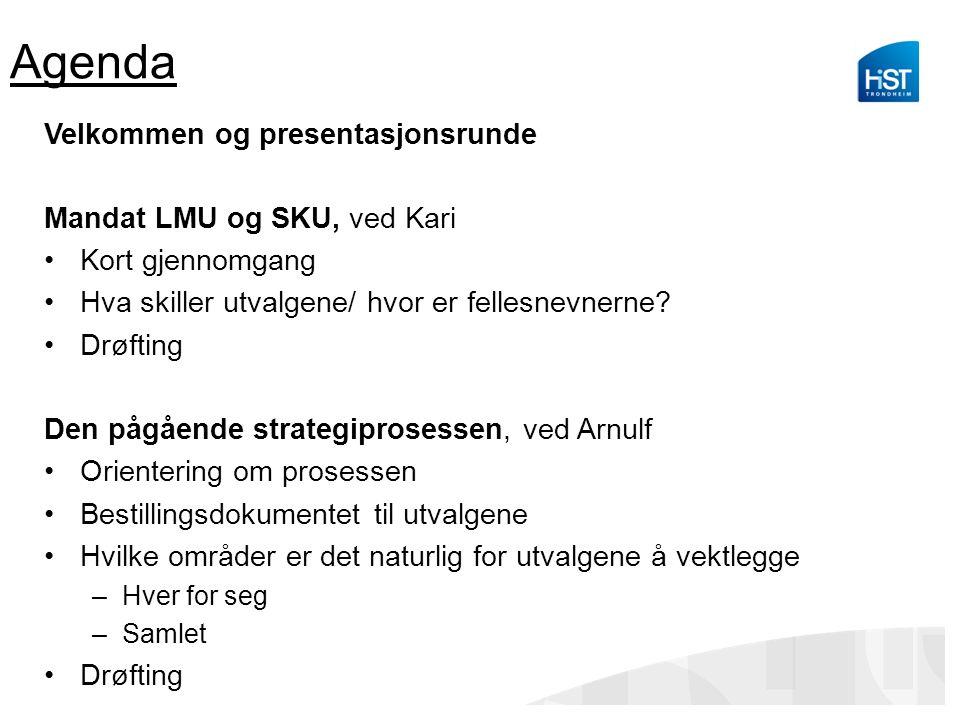 Agenda Velkommen og presentasjonsrunde Mandat LMU og SKU, ved Kari Kort gjennomgang Hva skiller utvalgene/ hvor er fellesnevnerne? Drøfting Den pågåen