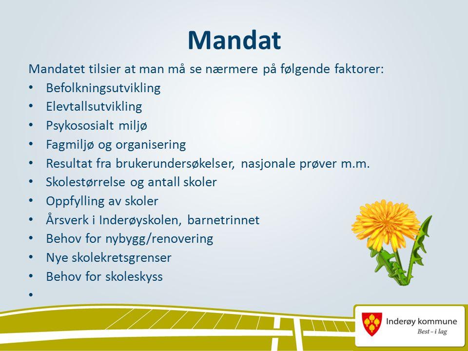 Mandat Mandatet tilsier at man må se nærmere på følgende faktorer: Befolkningsutvikling Elevtallsutvikling Psykososialt miljø Fagmiljø og organisering