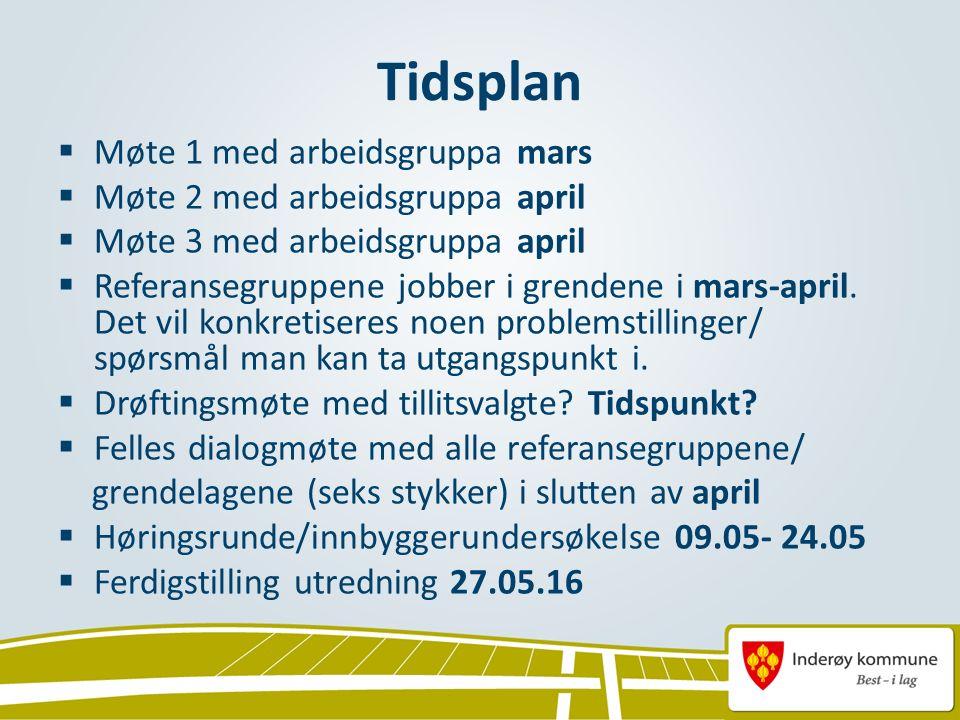 Tidsplan  Møte 1 med arbeidsgruppa mars  Møte 2 med arbeidsgruppa april  Møte 3 med arbeidsgruppa april  Referansegruppene jobber i grendene i mar
