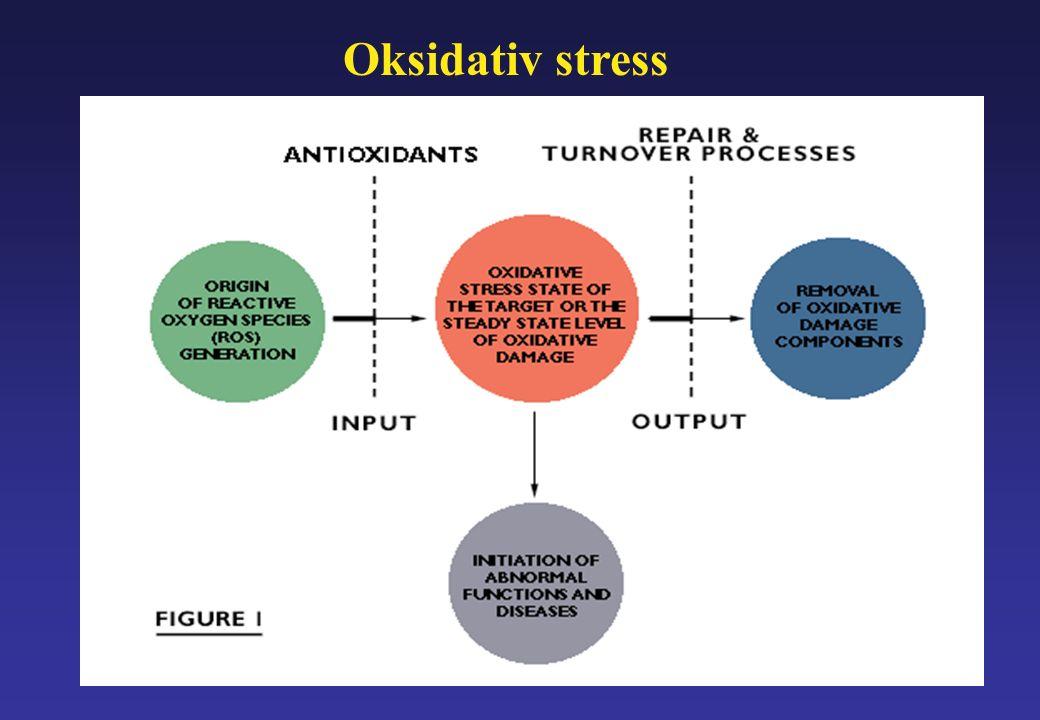 Oksidativ stress