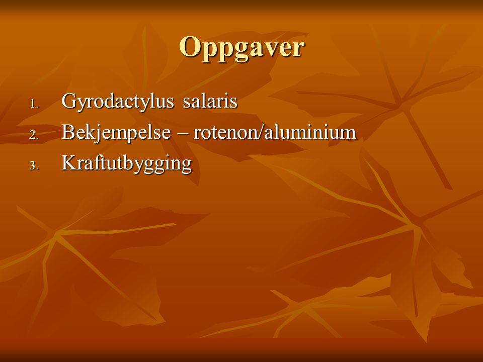 Oppgaver 1. Gyrodactylus salaris 2. Bekjempelse – rotenon/aluminium 3. Kraftutbygging