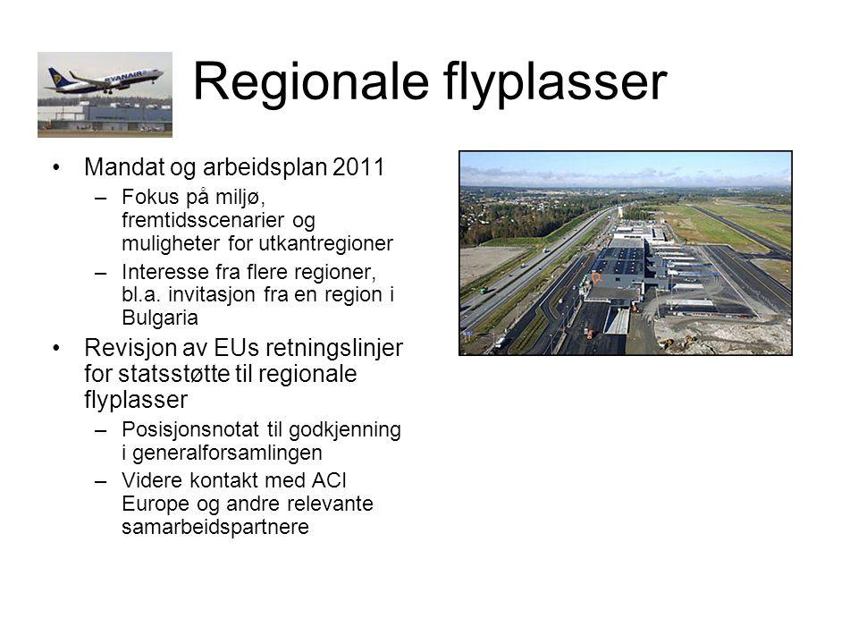 Regionale flyplasser Mandat og arbeidsplan 2011 –Fokus på miljø, fremtidsscenarier og muligheter for utkantregioner –Interesse fra flere regioner, bl.