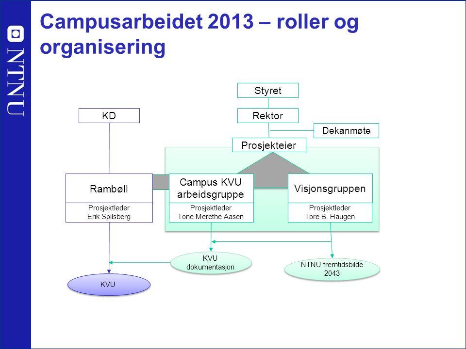 Campusarbeidet 2013 – roller og organisering Styret Rektor Prosjekteier Dekanmøte KD Visjonsgruppen Prosjektleder Tore B.