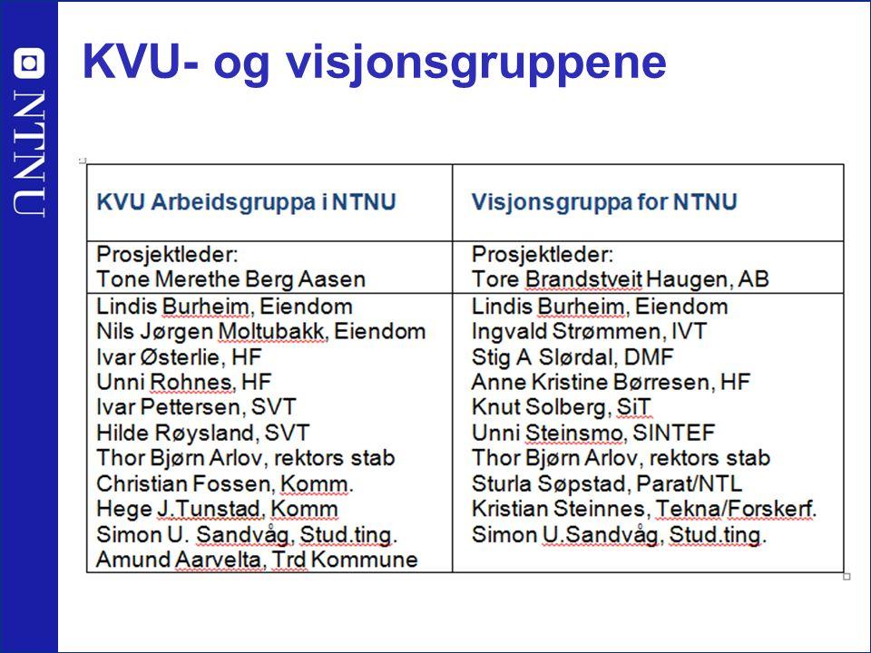 KVU- og visjonsgruppene