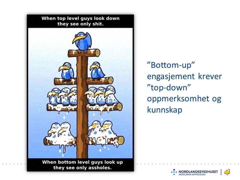 Bottom-up engasjement krever top-down oppmerksomhet og kunnskap