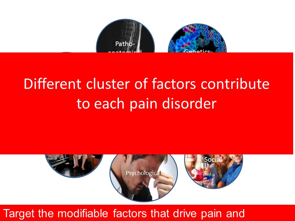 What underlies CLBP? Patho- anatomical Psychological Social Neuro- physiological Lifestyle Physicall Genetics Different cluster of factors contribute