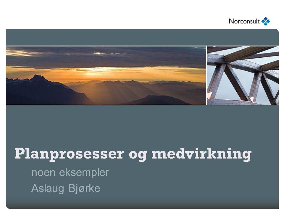 Planprosesser og medvirkning noen eksempler Aslaug Bjørke