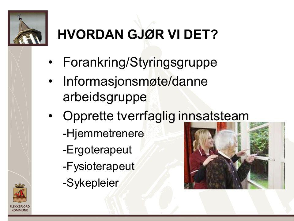 INNOVASJONSTEAMET : Eva Janne Holstad, Ergoterapeut Mona Tollefsen, Hjelpepleier Elin Loga, Nestleder hjemmetjenesten Marie Solvik, Rehab.sykepleier