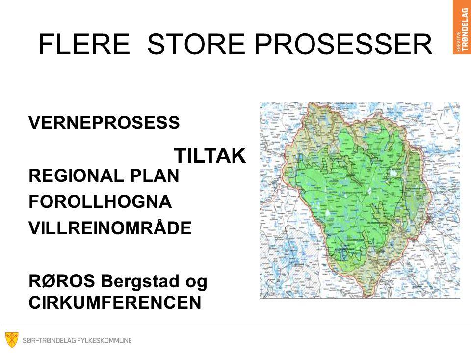 FLERE STORE PROSESSER VERNEPROSESS REGIONAL PLAN FOROLLHOGNA VILLREINOMRÅDE RØROS Bergstad og CIRKUMFERENCEN TILTAK