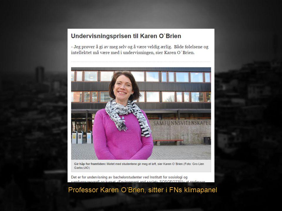 Professor Karen O'Brien, sitter i FNs klimapanel