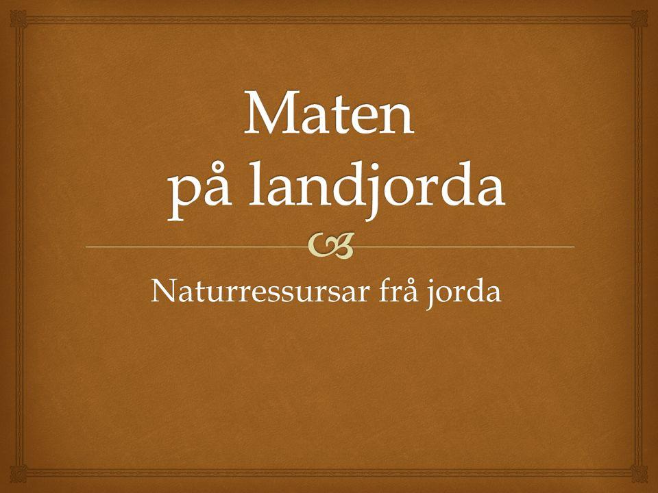 Naturressursar frå jorda