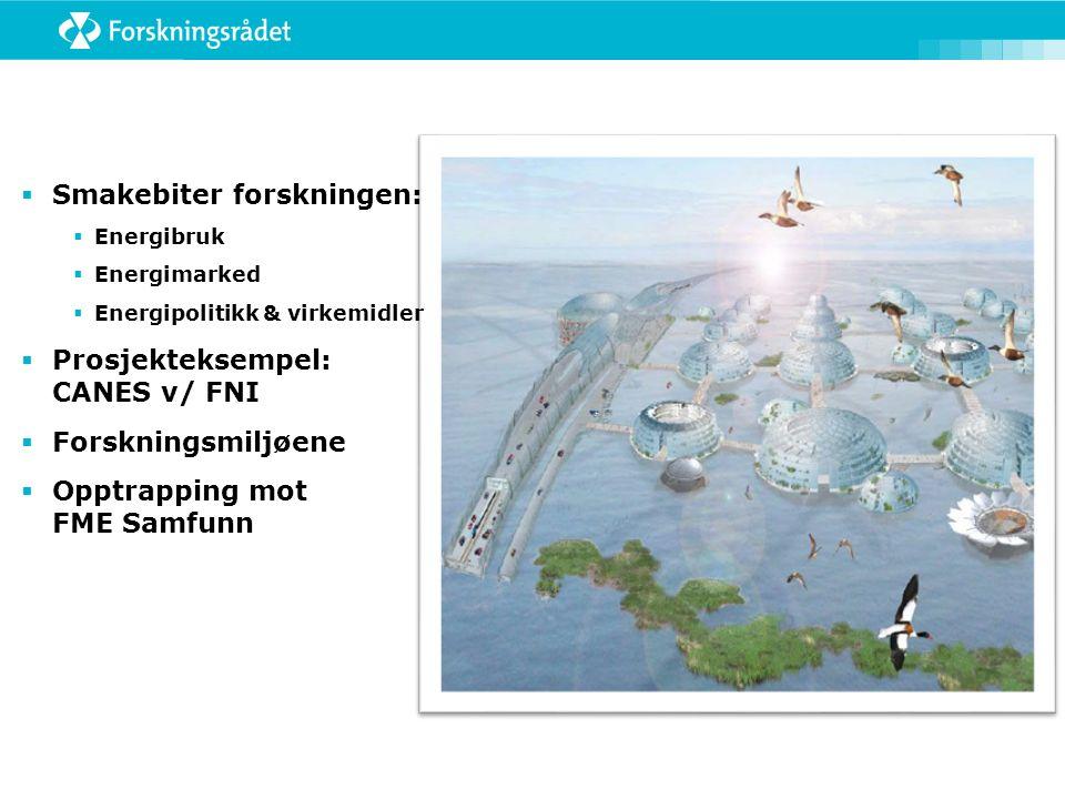 Eksempel: Norsk klimapolitikk  I 2000 hadde Norge knapt næringsspesifikk klimapolitikk, men i år2010 hadde man utviklet et bredt spekter av ulike næringsspesifikke virkemidler; hvorfor.