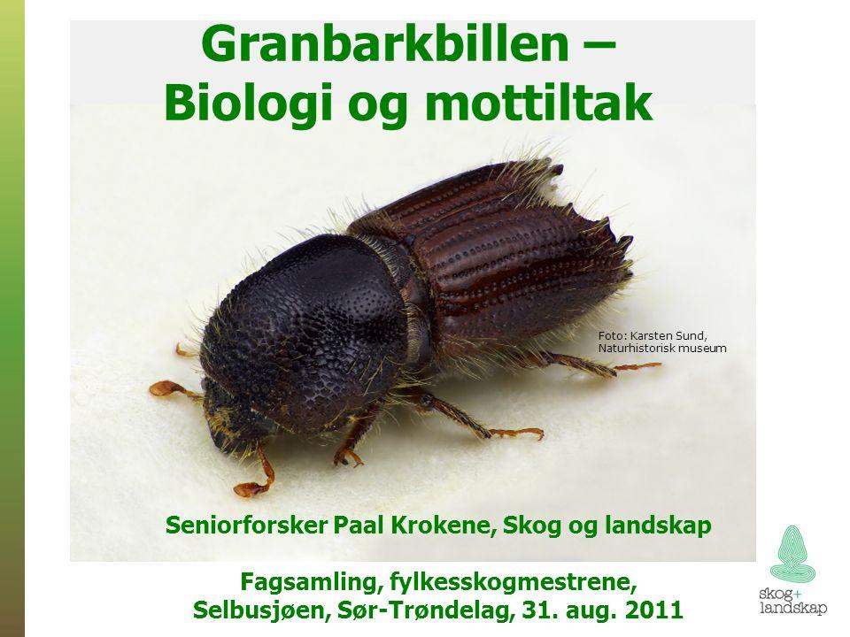 Gudrun Svenskene bruker feller + reg. døde trær Fangst Døde trær + (Åke Lindelöv, SLU)