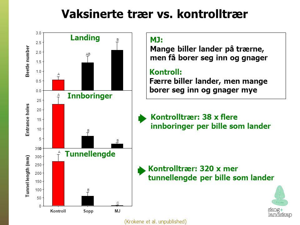 Vaksinerte trær vs.