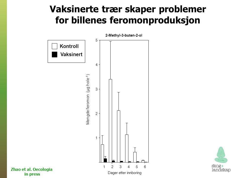 Vaksinerte trær skaper problemer for billenes feromonproduksjon Zhao et al.