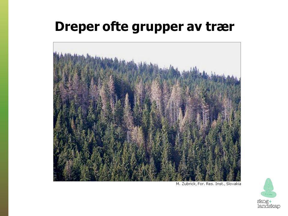 Dreper ofte grupper av trær M. Zubrick, For. Res. Inst., Slovakia