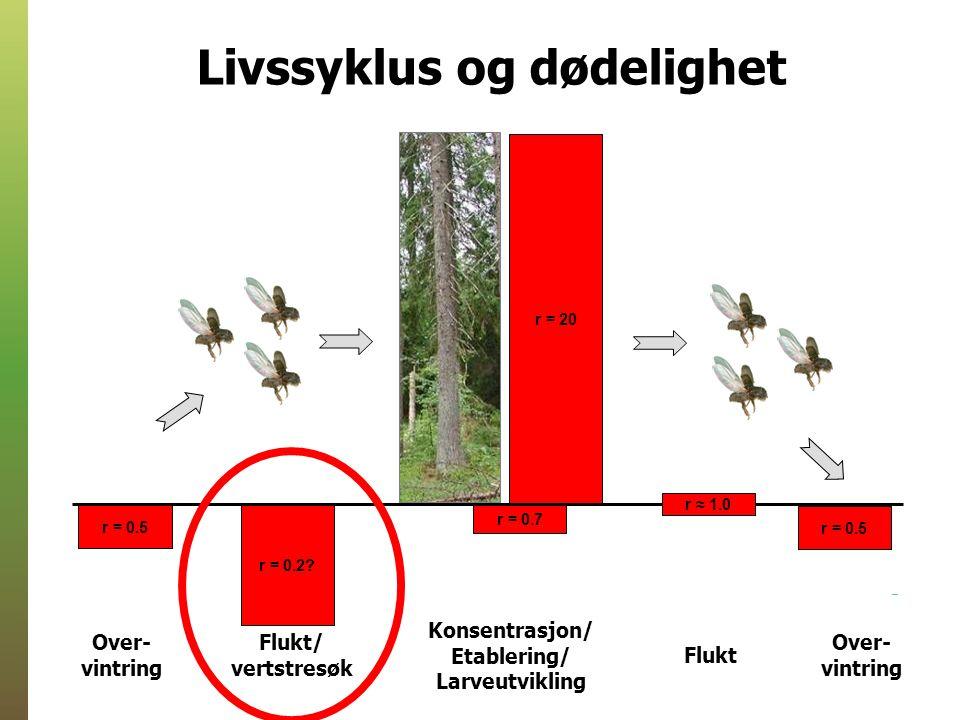 Ingen reproduksjon i MJ-trær MJ-trær: Ingen egg, larver, pupper Dødelighet: 0% Kontrolltrær: Egg i ca.