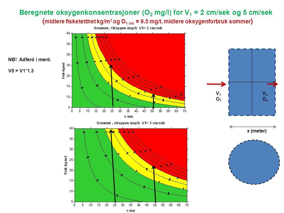 x (meter) V1O1V1O1 VxOxVxOx Beregnete oksygenkonsentrasjoner (O 2 mg/l) for V 1 = 2 cm/sek og 5 cm/sek ( midlere fisketetthet kg/m 3 og O 1 inn = 9.5 mg/l, midlere oksygenforbruk sommer ) NB.